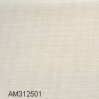 AM312501