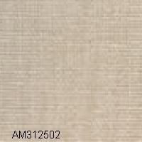 AM312502