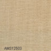 AM312503