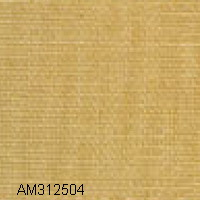 AM312504