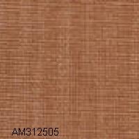 AM312505