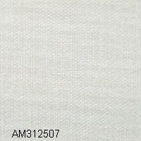 AM312507
