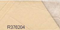 R376204