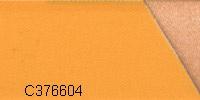 C376604