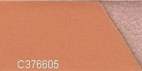 C376605