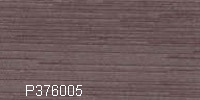 P376005