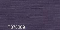 P376009