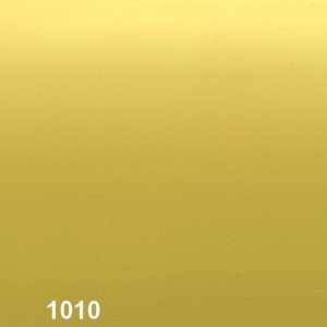 10-1010