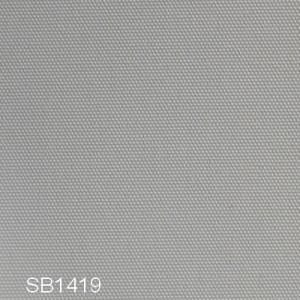 SB1419