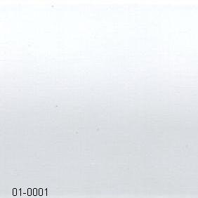 01-0001