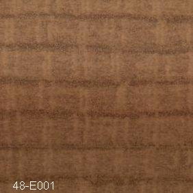 48-E001