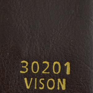30201Vison
