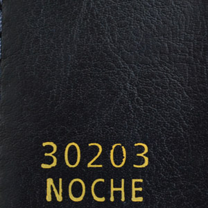 30203Noche