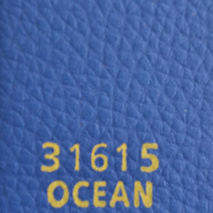 31615ocean