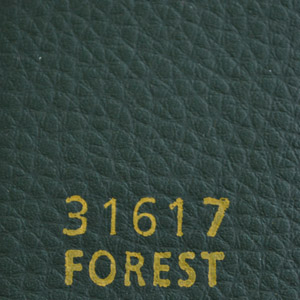 31617forest