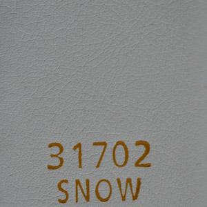 31702Snow