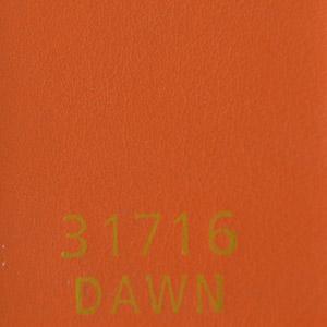 31716Dawn